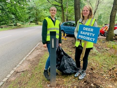 Cannock Chase Deer Safety Project